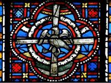 Phenix vitrail de la cathedrale